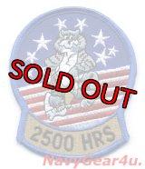 ノースロップグラマン社 F-14 2500飛行時間記念マスコットパッチ