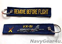 画像1: 海上自衛隊第51航空隊P-1キーリング(ブルー)